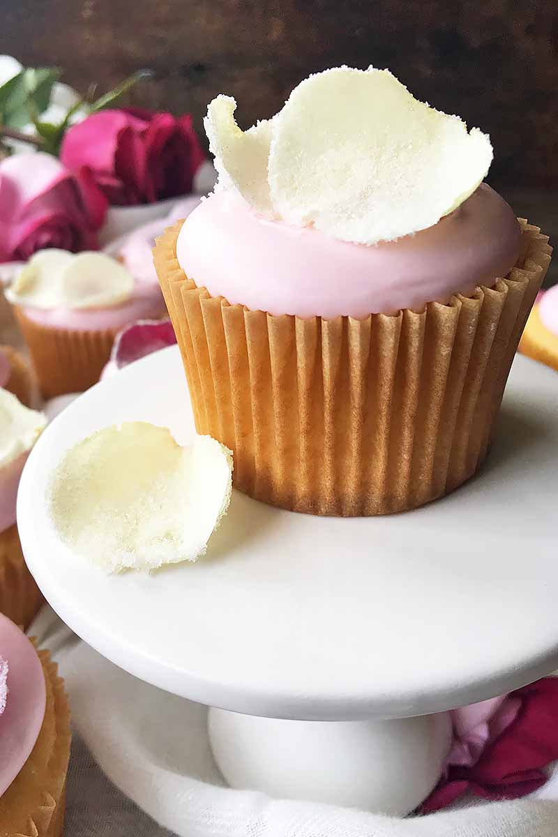 Vertical image of a vanilla cupcake with pink icing, surrounded by candied white rose petals.