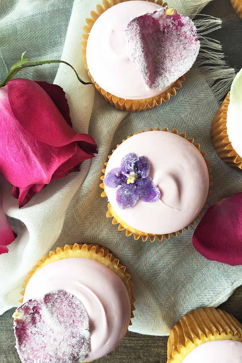 Vertical top-down image of a few cupcakes topped with pink frosting and sugared flowers on a white towel next to roses.