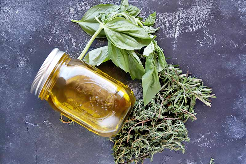 Overhead horizontal image of a glass jar of olive oil on its side, with sprigs of fresh basil and thyme, on a gray slate surface.