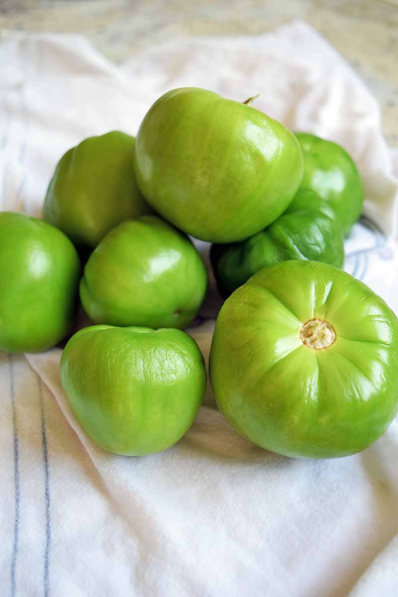 Vertical image of a pile of green tomatillos on a white dish towel, on a kitchen countertop.