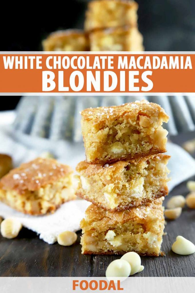 Vertical image of a stack of blondies in front of a metal pan, with text on the top and bottom of the image.