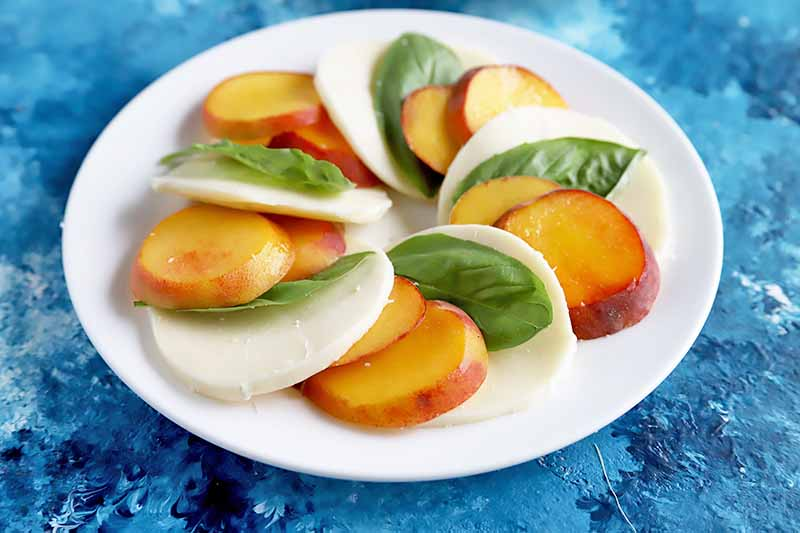 Horizontal image of a white place with singled peaches, mozzarella cheese, and whole basil leaves on a blue surface.