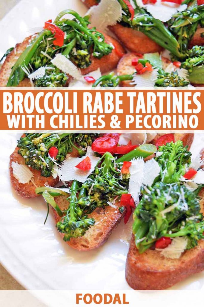 Vertical oblique overhead image of a white plate of broccoli rabe tartines on toasted baguette slices, with thinly slices red chili pepper and shaved aged Pecorino cheese on top, printed with orange and white text at the midpoint and the bottom of the frame.
