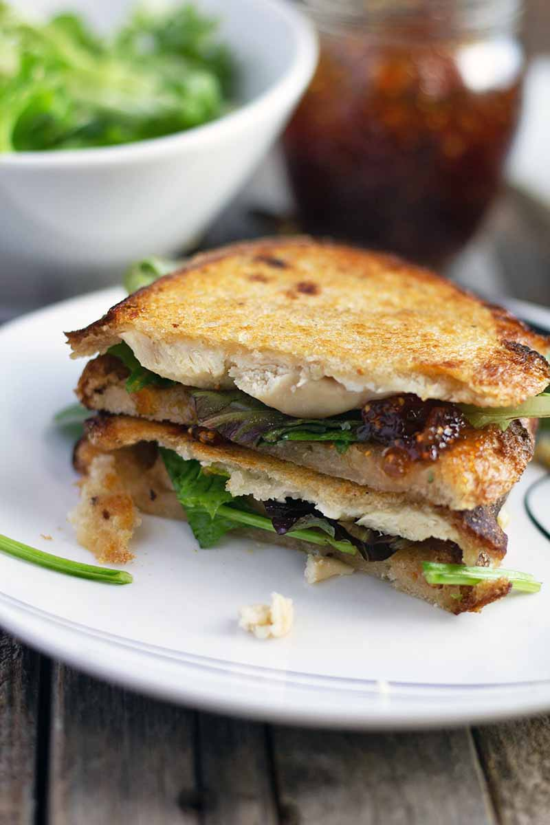 Vertical image of two halves of a grilled chicken sandwich on a white plate, with a white bowl of salad greens and a jar of fig jam in soft focus in the background, on an unfinished wood surface.