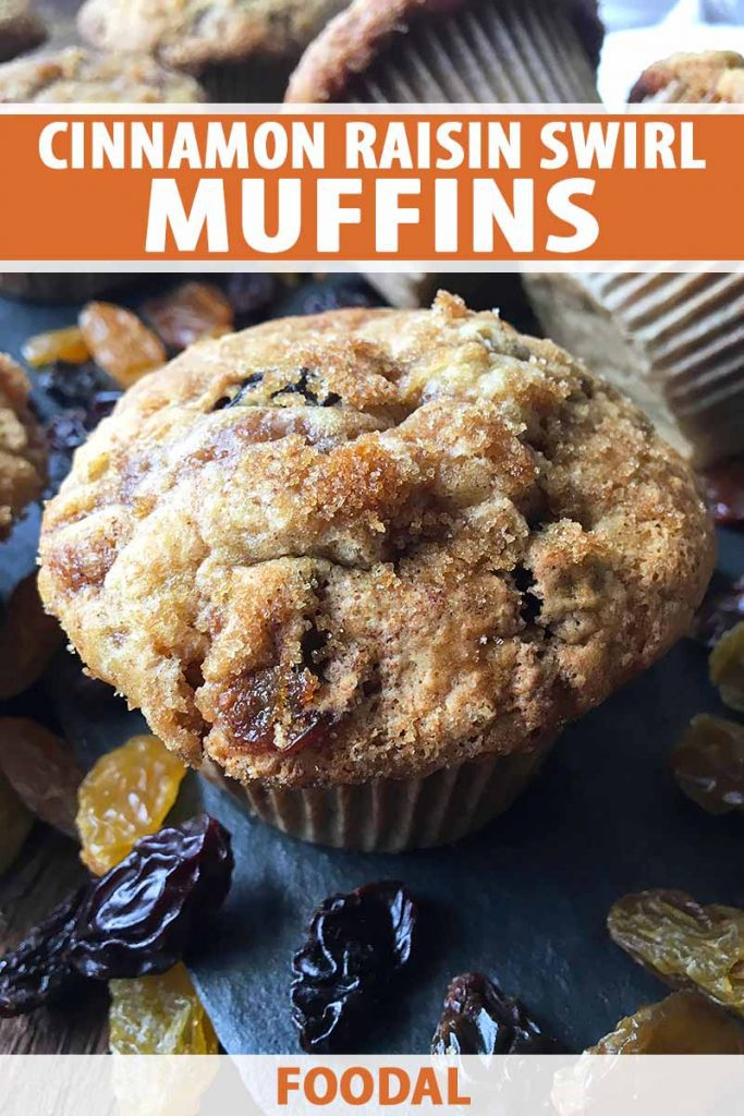 Vertical close-up image of a cinnamon muffin surrounded by dried fruit, with text on the top and bottom of the image.