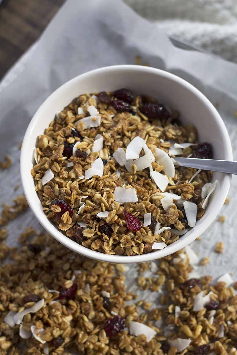 Vertical image of a white bowl filled with a coconut and dried fruit granola.