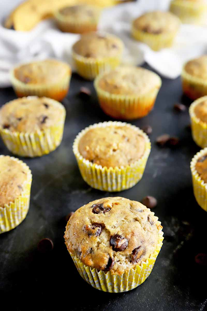 Vertical image of banana chocolate chip muffins on a black slate next to a white towel and chocolate chips.