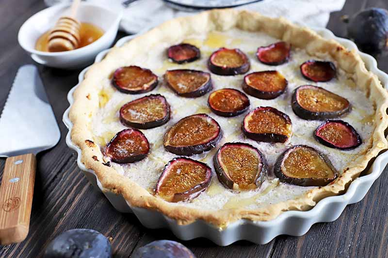 Horizontal image of a fig and ricotta tart in a white ceramic pan, on a dark brown wood table with a metal and wood pie server, a white dish of honey with a wooden dipper, and a few pieces of fresh fruit.
