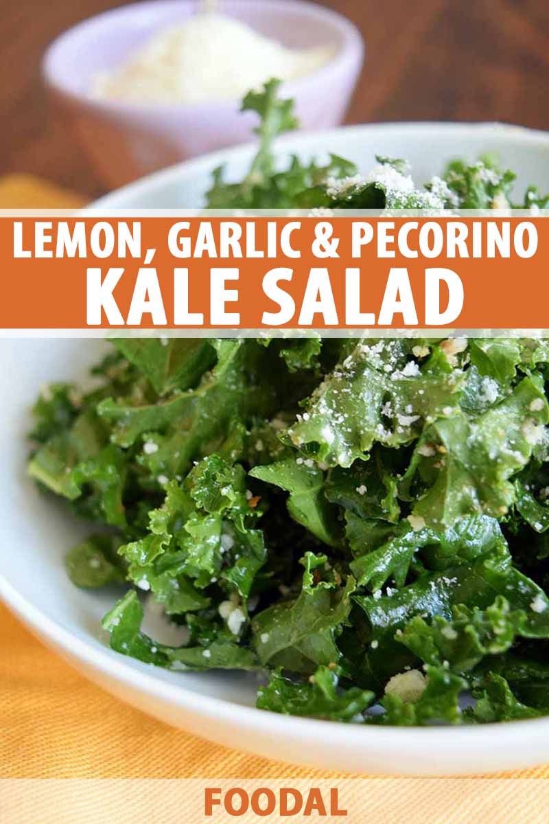 Vertical image of a white ceramic bowl of kale salad with a smaller bowl of grated cheese in soft focus in the background on a yellow cloth on top of a brown wood surface, printed with orange and white text in the middle and at the bottom of the frame.
