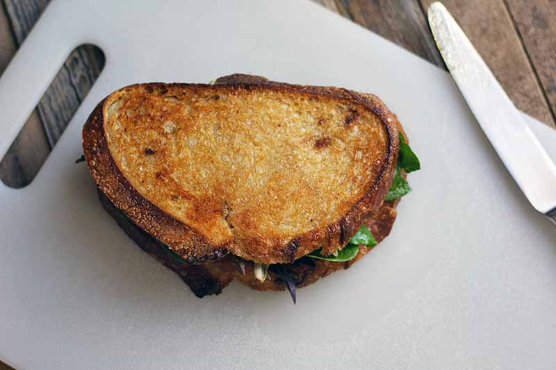Horizontal image of a grilled chicken and greens sandwich on a white plastic cutting board with a knife to the right, on a wood surface.