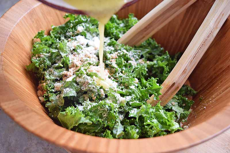 Closely cropped horizontal image of kale topped with grated cheese being tossed with wooden tongs in a wooden bowl, with dressing being poured over the top from a white ceramic bowl with a red glazed rim.