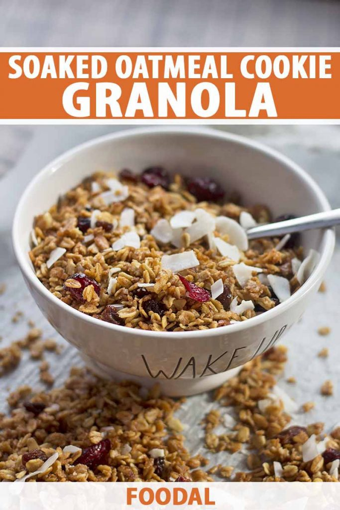 Vertical image of a bowl with granola and a spoon, with text on the top and bottom of the image.