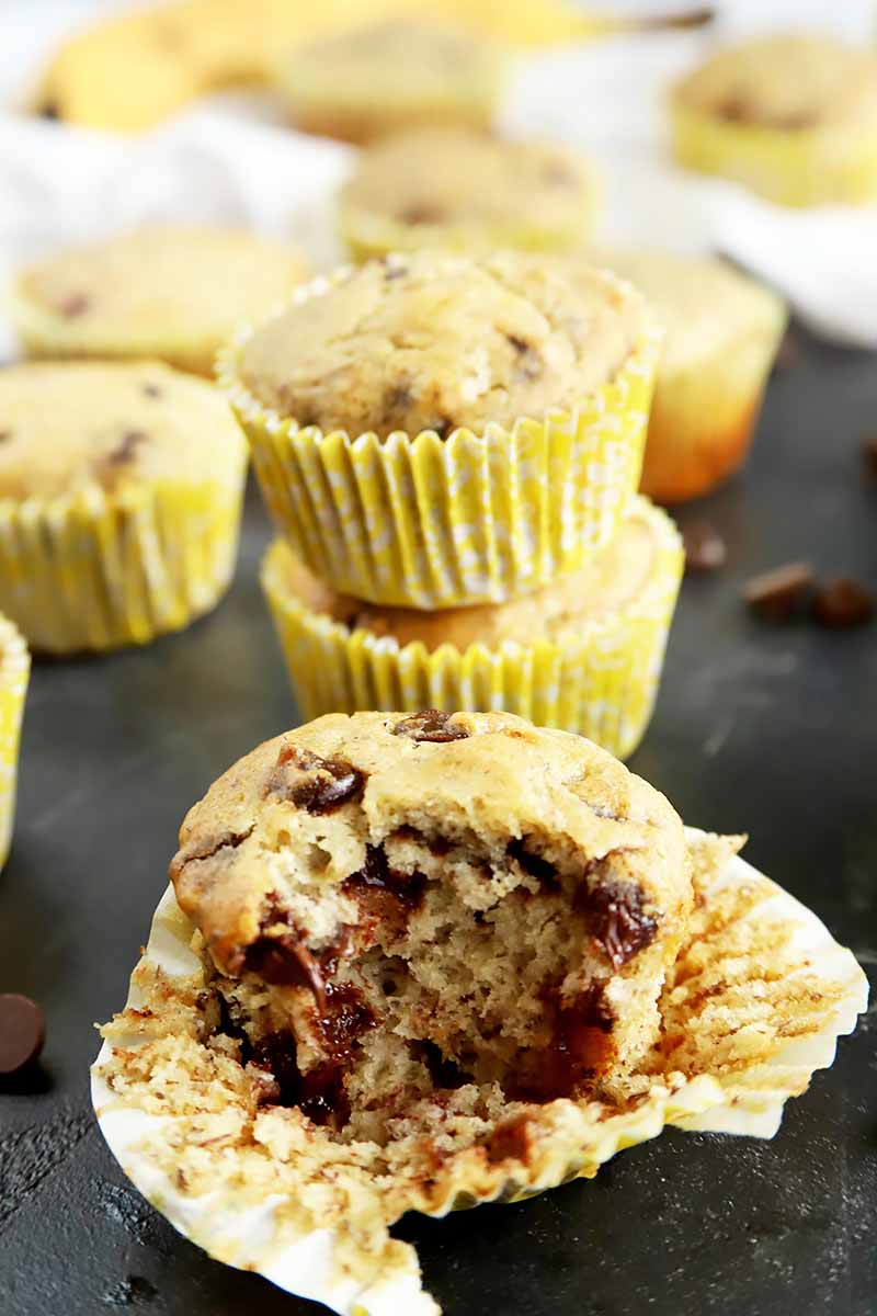 Vertical image of banana chocolate chip muffins, one with a large bite taken out of it.
