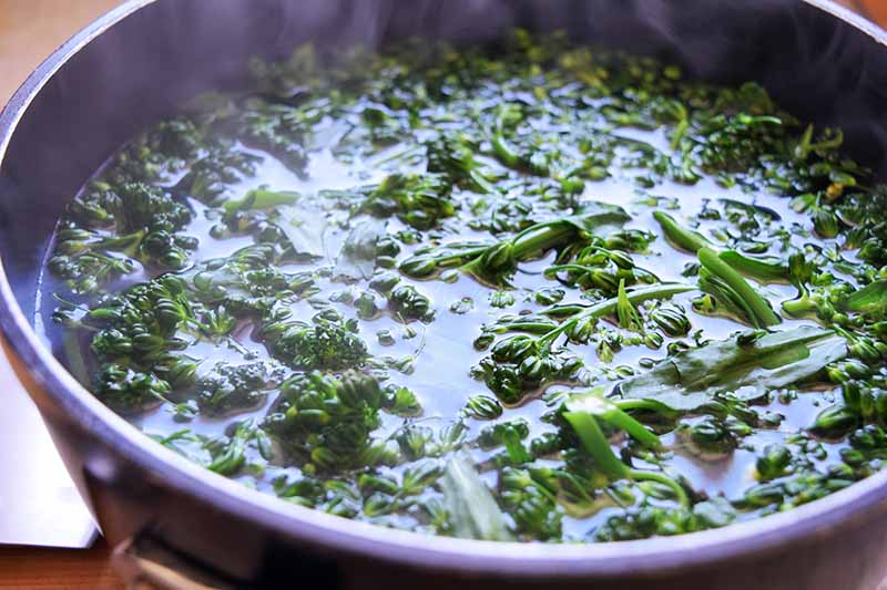 Chopped broccoli rabe being cooked in a steaming liquid in a large frying pan.