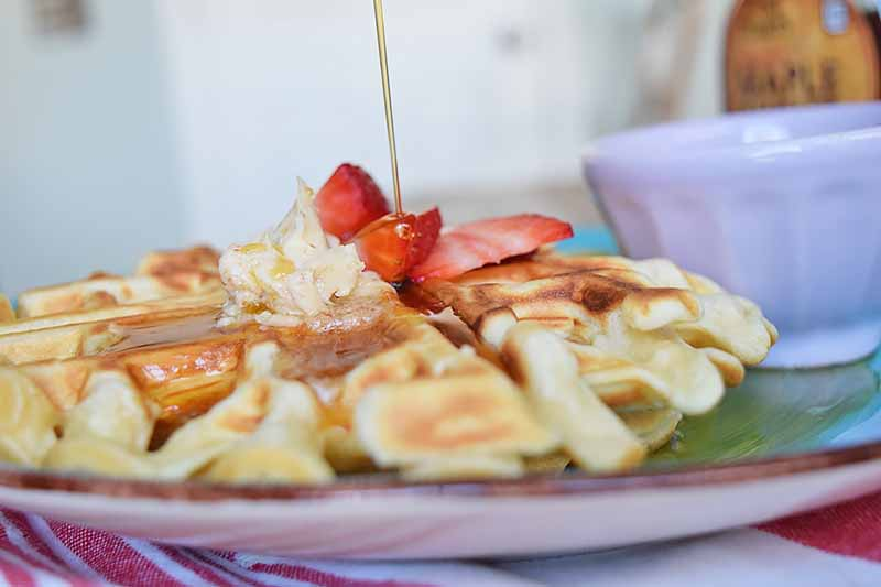 Horizontal image of a fluffy waffle on a plate with strawberries, maple syrup, and butter.