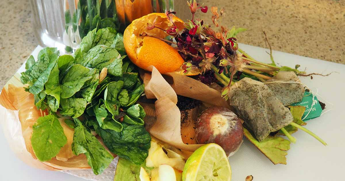 Kitchen Composting 101 How To