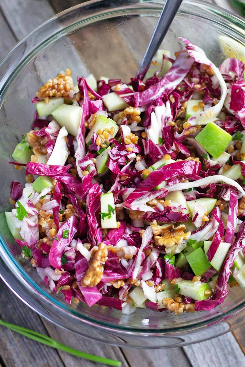 Vertical overhead image of a large glass bowl of einkorn salad with radicchio, walnuts, and green apple, on an aged and weathered unfinished wood surface.