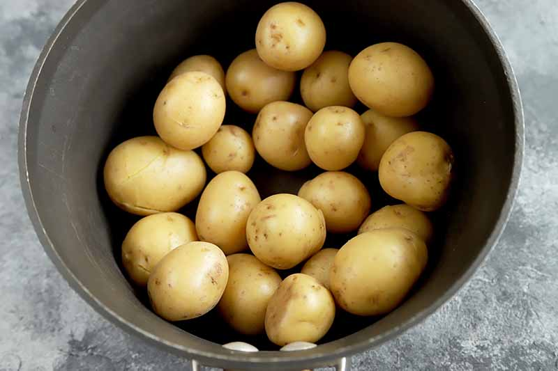 Horizontal image of a black pot with cleaned small spuds.