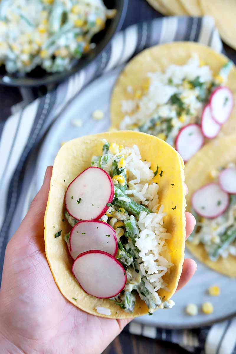 Vertical image of a hand holding a vegetarian taco up to the camera in the foreground, with more on a serving platter and a bowl of filling in soft focus in the background, on a surface topped with a folded and gathered striped white and gray cloth.