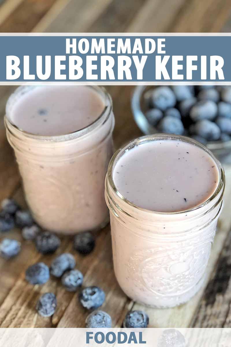 HOW TO MAKE HOMEMADE BLUEBERRY KEFIR RECIPE FOODAL