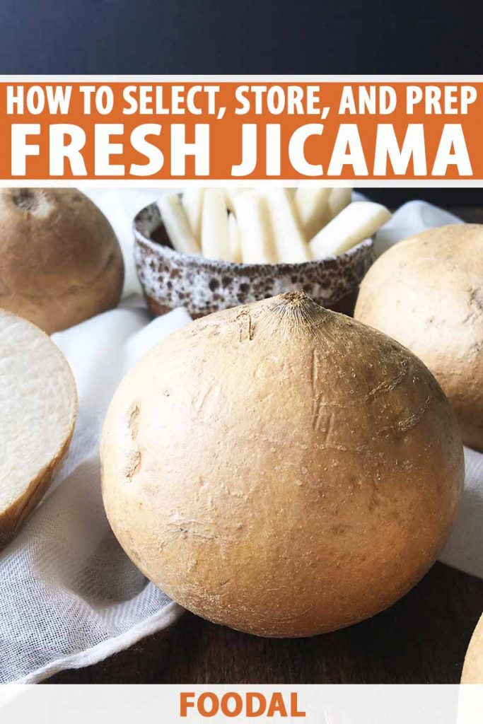 Vertical image of whole jicama vegetables and a bowl of jicama fries, with text on the top and bottom of the image.