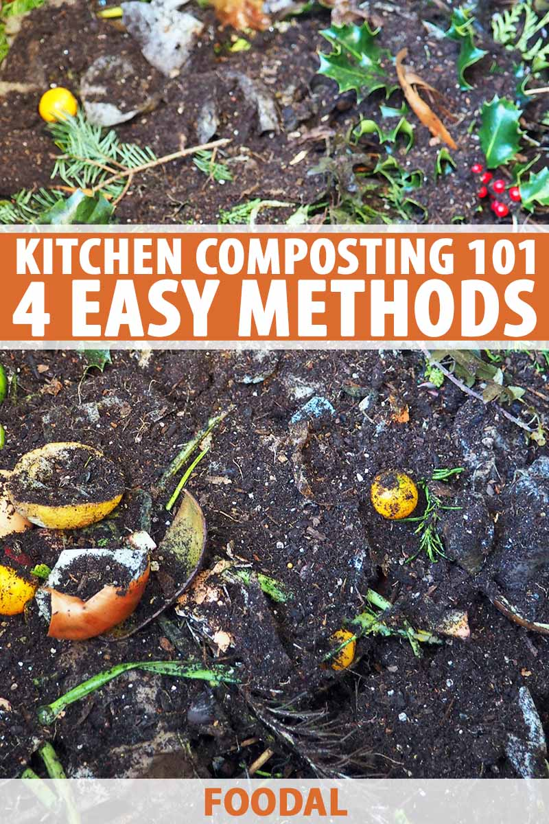 Kitchen Composting 101 How To Repurpose Food Scraps Foodal