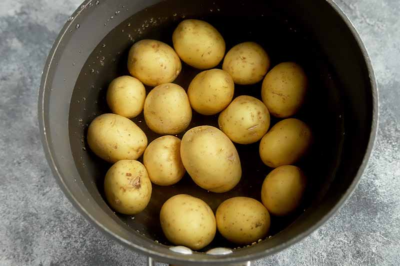 Horizontal image of potatoes in a pot with water.