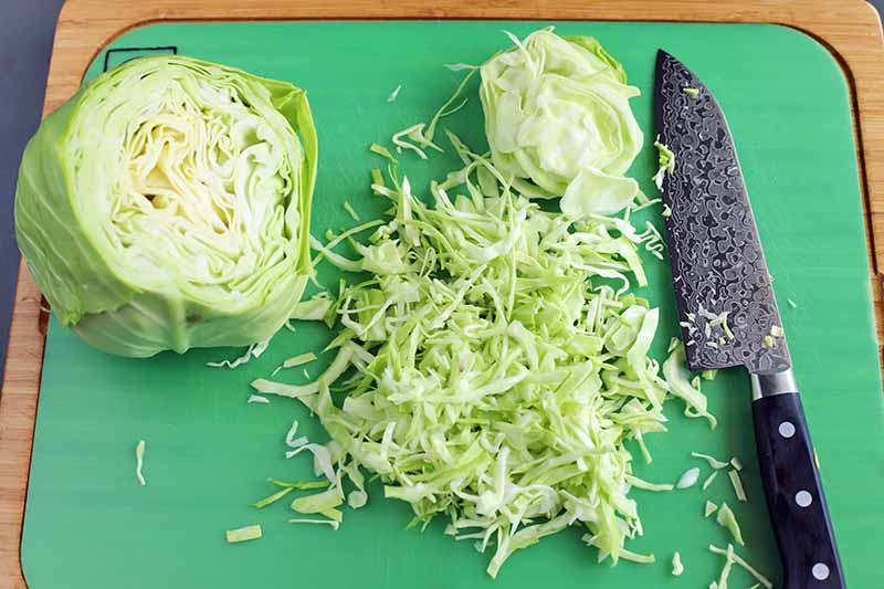 Horizontal oblique overhead image of half of a green cabbage with more that has been sliced into ribbons beside a Japanese knife, on a green cutting board with a light brown wood frame, on a gray surface.