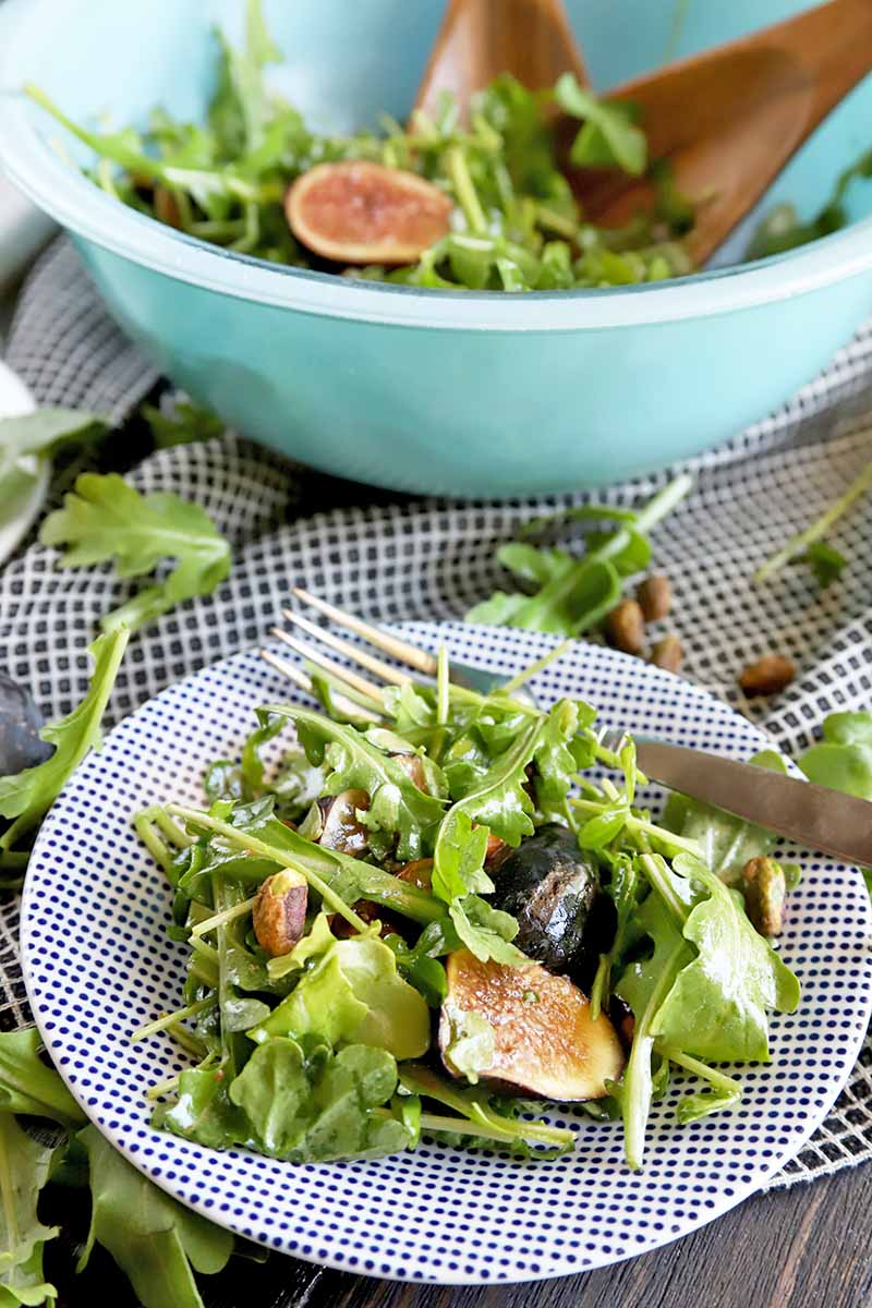 Vertical image of a patterned blue and white plate of arugula with sliced figs, pistachios, green pea shoots, and dressing, with scattered nuts and leaves on a checkered cloth on a brown wood surface, with a blue glass bowl containing more salad in the background, with brown wooden serving utensils and a fork on the rim of the plate.