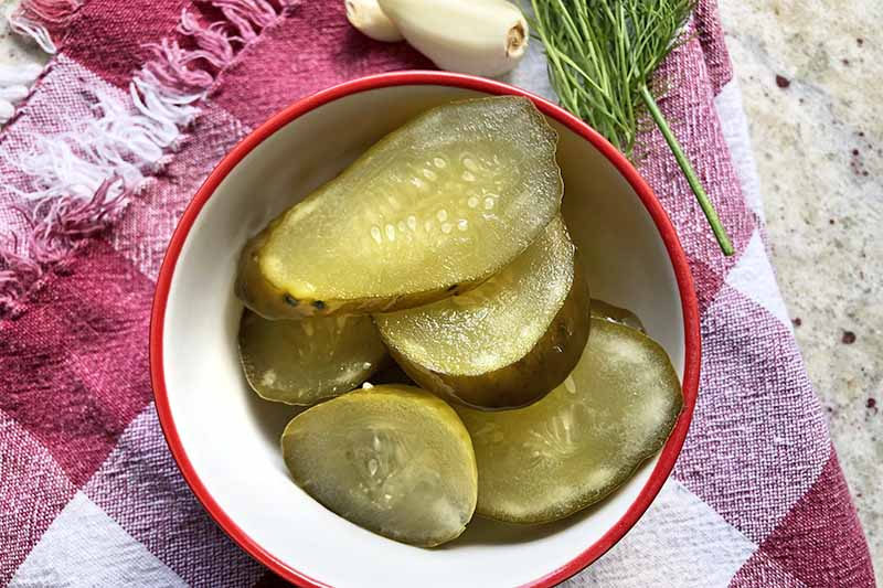 Overhead horizontal image of pickle chips in a white and red ceramic bowl, on a maroon and white checkered and fringed cloth, with a sprig of fresh dill and a few cloves of garlic, on a speckled beige countertop.
