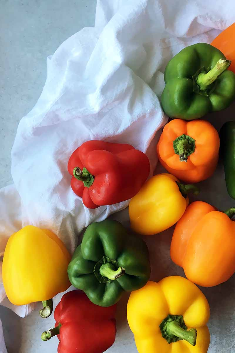 Vertical top-down image of assorted fresh bell peppers on a white towel.