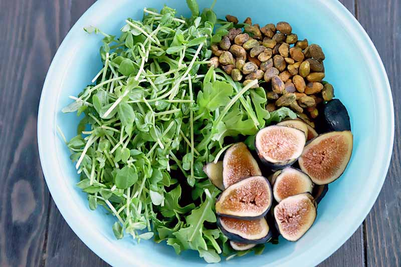Horizontal closely cropped overhead image of a pale blue glass bowl of arugula, pea shoots, pistachios, and sliced fresh figs, in separate piles prior to tossing, on a dark brown wood surface.