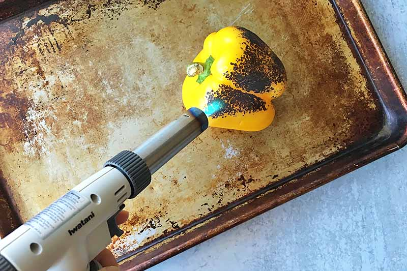 Horizontal image of a kitchen torch charring a yellow bell pepper on a baking sheet.