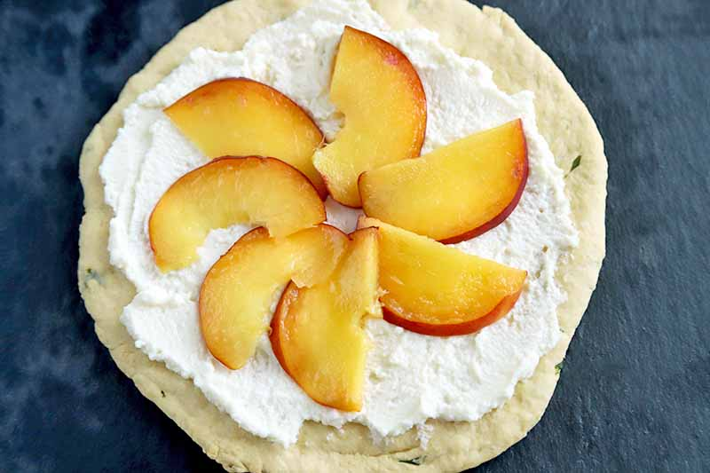 Horizontal closely cropped overhead image of a round homemade flatbread spread with ricotta and topped with thin peach slices with the peel on that have been fanned out to form a circle, on a dark blue surface.