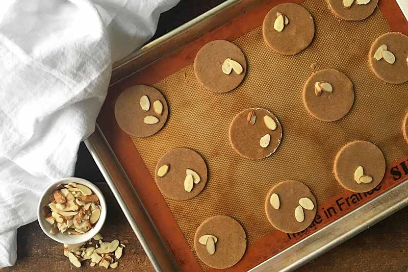 Horizontal image of dark brown dough circles topped with almond slices.