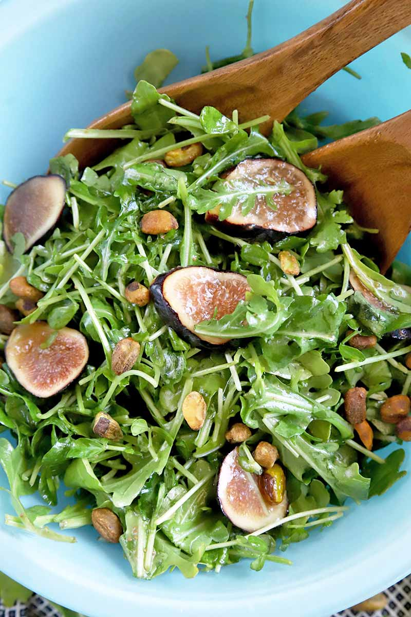 Closely cropped vertical oblique overhead image of a light blue glass bowl of arugula with sliced figs, pea shoots, and pistachios, with wooden serving utensils.