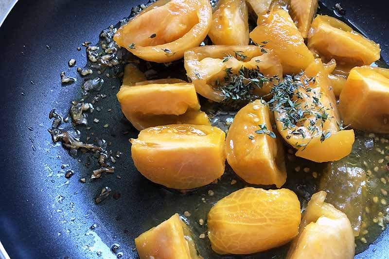 Quartered peeled golden tomatoes in a large nonstick frying pan with sauteed garlic and shallots, and dried herbs.
