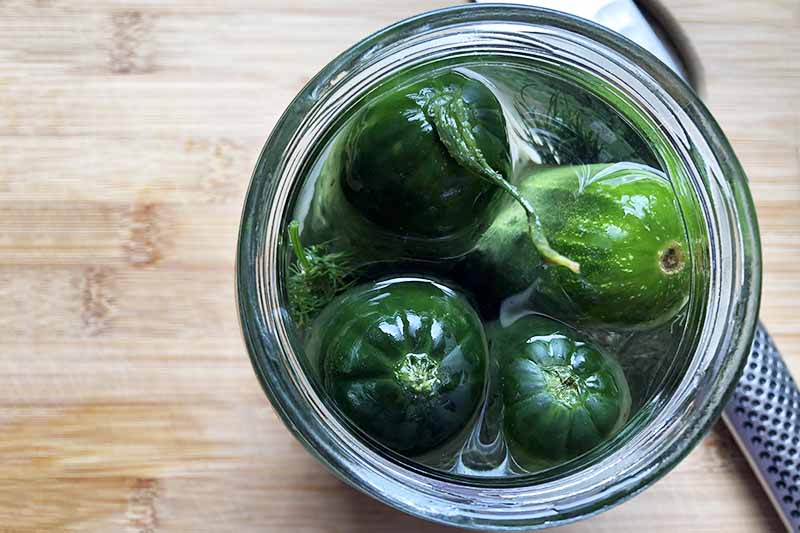 Horizontal overhead image of a glass jar filled with cucumbers and brine, on a wood cutting board with a knife.