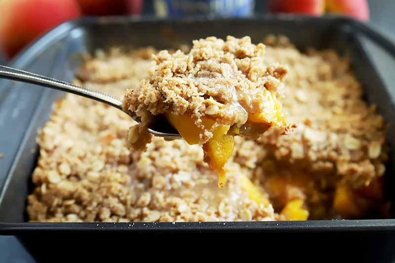 Horizontal image of a metal serving spoon lifting a portion of homemade peach crisp up to teh camera, with more of the dessert in a metal baking pan in soft focus in the background with several whole orange and yellow stone fruits.