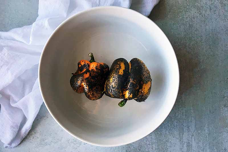 Horizontal image of charred vegetables in a white bowl.
