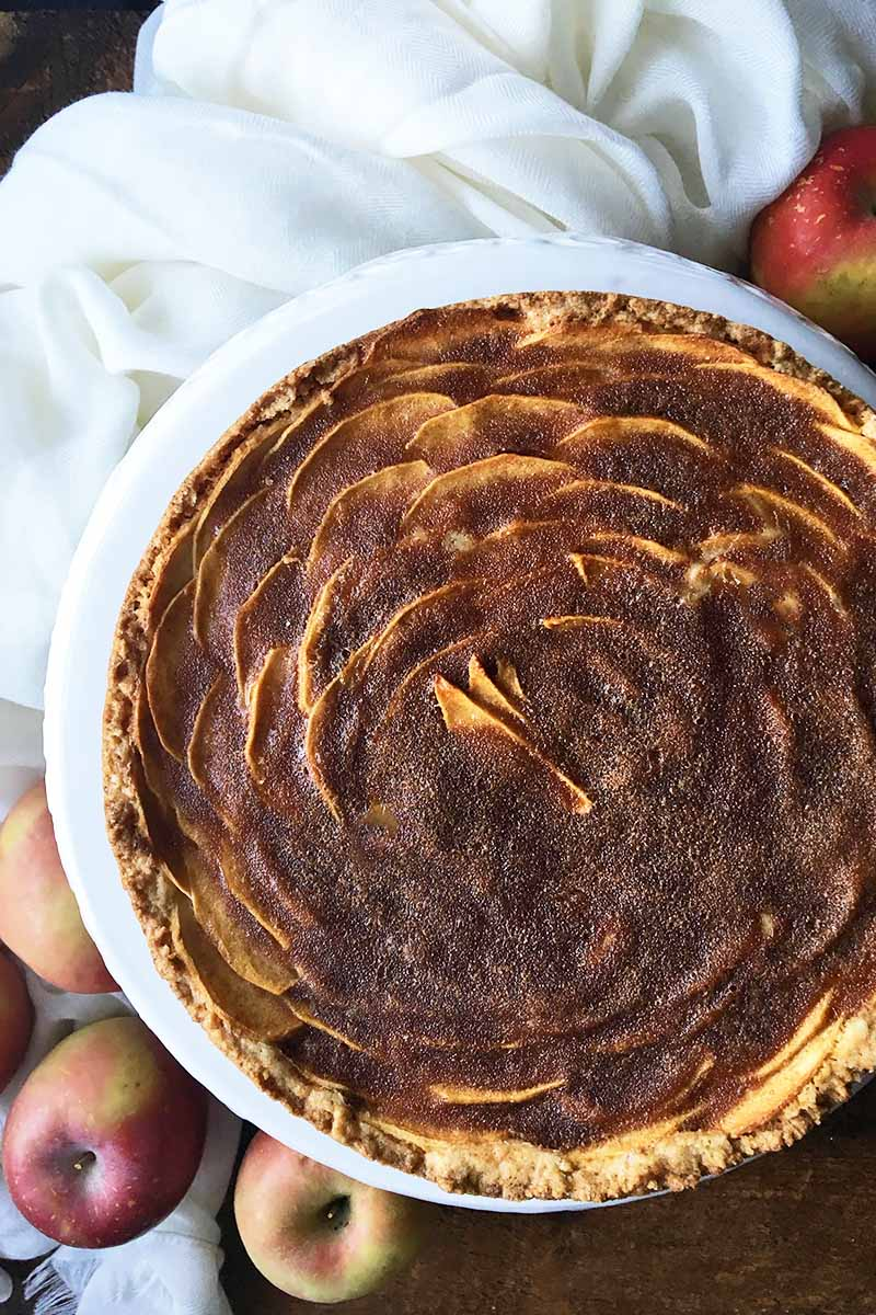 Apple Tart Cake With Cinnamon Sugar Topping Foodal