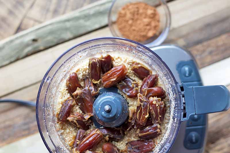Horizontal image of a food processor with whole dates and water.
