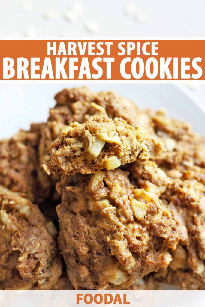 Vertical image of a pile of homemade breakfast cookies on a white plate, printed with orange and white text near the top and at the bottom of the frame.