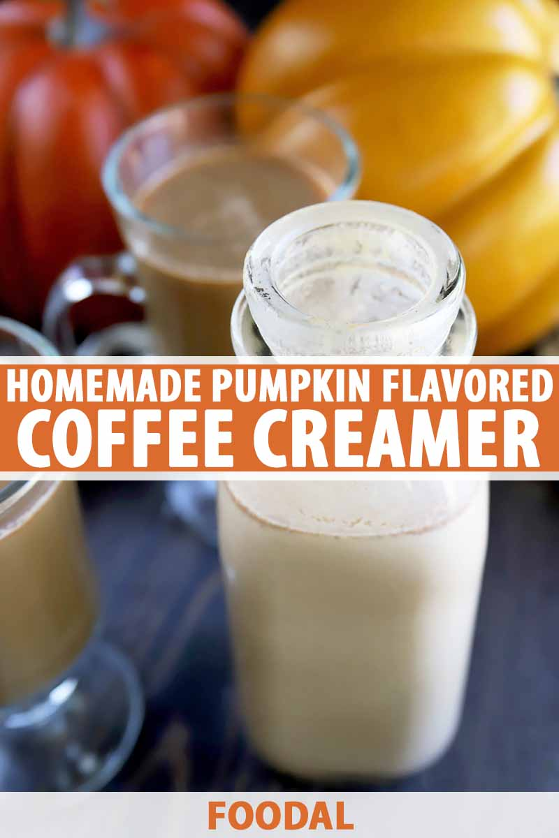 Vertical image of glasses of coffee and a bottle of creamer and pumpkins in the background, with text in the center and bottom of the image.