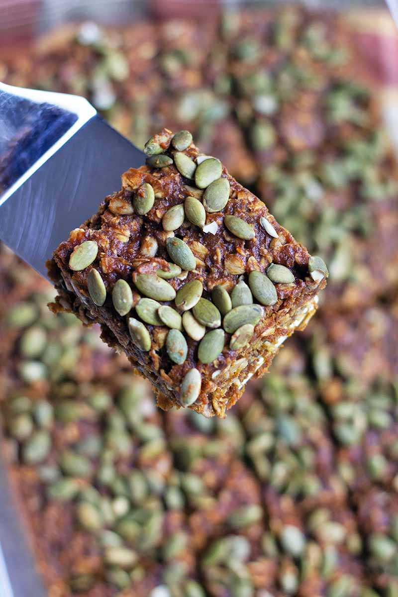 Vertical close-up image of a spatula holding a square baked good topped with green seeds.