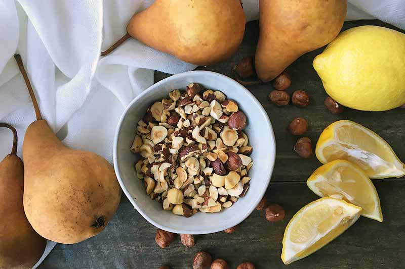 Horizontal image of chopped hazelnuts in a white bowl surrounded by fresh fruit.