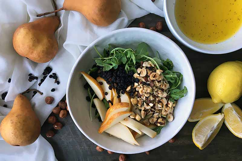 Horizontal image of piles of sliced fruit, dried currants, chopped hazelnuts, and arugula in a white bowl.