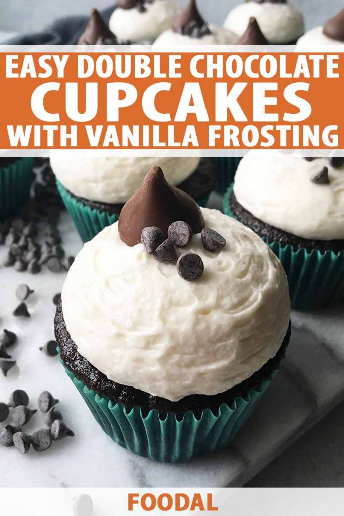 Vertical close-up image of chocolate vanilla cupcakes with blue liners, with text on the top and bottom of the image.