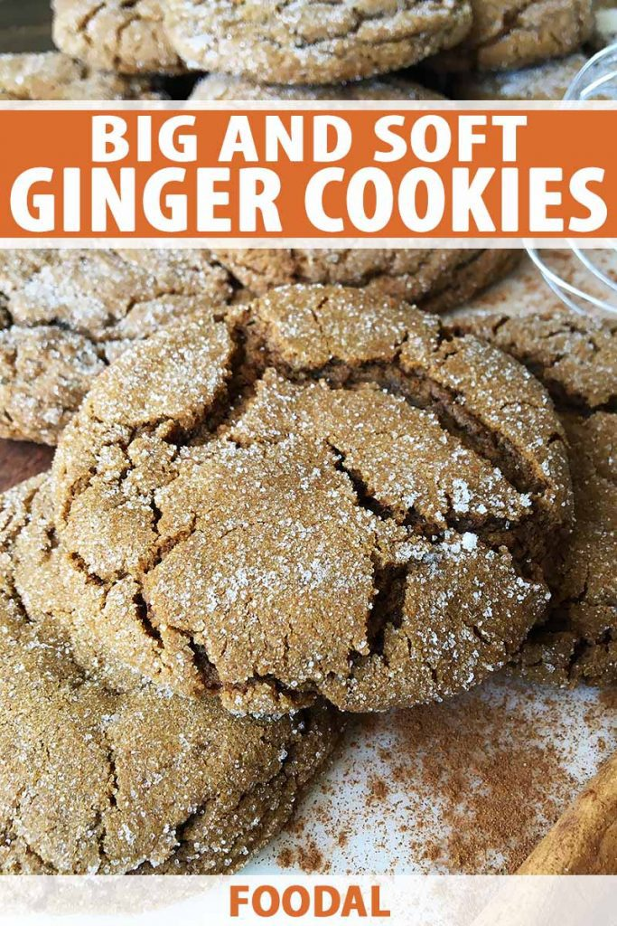 Vertical image of a pile of crackled cookies coated with a thin layer of sugar, with text on the top and bottom of the image.