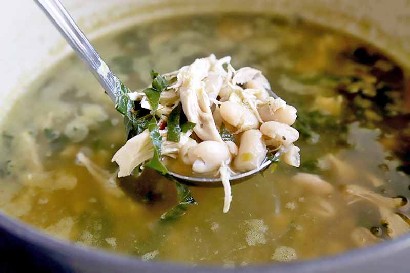 Horizontal image of a ladleful of chicken soup with cannellini beans and kale, with a pot containing more of the dish in soft focus in the background.